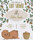 Baby shower invitation with bear, basket, oak and acorn Stock Images