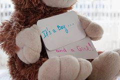 Baby shower `It`s a boy... and a girl`. Teddy bear holds an announcement card for twins arrivals Royalty Free Stock Photography