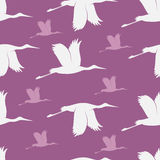 Baby shower stork pattern Royalty Free Stock Photography
