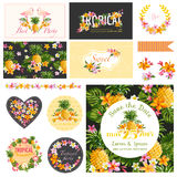 Baby Shower Tropical Theme Design Elements Stock Photos