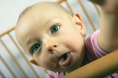 Baby shows tongue Royalty Free Stock Images