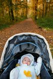 Baby in sidercar on background of the autumn park Royalty Free Stock Photography