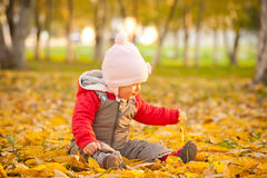 Baby sit on leafes in autumn park Stock Images