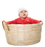 The baby sits in a basket. Stock Photography