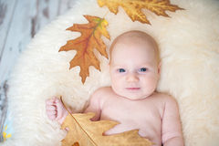 The baby sits Royalty Free Stock Photos
