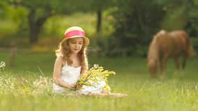 Baby sits in a clearing, turns over the torn wild flowers and makes a bouquet from them. Slow motion stock footage