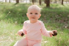 A little girl sitting on the lawn and holding two cones. The baby sits on the grass and plays with two fir cones, she is dressed in a pink blouse against the stock photo