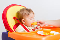 Baby sits in  highchair with orange. Baby sitting in highchair and eats an orange Royalty Free Stock Photography