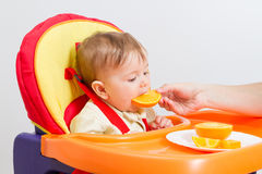 Baby sits in  highchair with orange. Baby sitting in highchair and eats an orange Stock Image