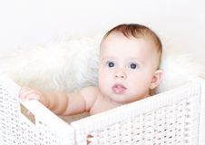 Baby sits in white basket Royalty Free Stock Images