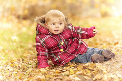 Baby sitting in autumn leaves Royalty Free Stock Photography
