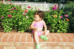 Baby sitting in Garden. Baby girl sitting on a brick wall in the garden by a be of zinnias with a white pickett fence in the background Royalty Free Stock Photography