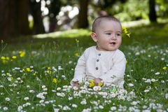 Baby sitting in grass Stock Photography