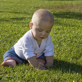 Baby sitting on grass playing. Barefoot blonde baby sitting on the grass playing Stock Photos