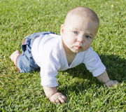 Baby sitting on grass playing Stock Photography