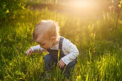 Baby sitting in the grass in sunlight. Cute summer blond girl in the garden stock image