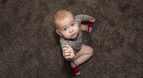 Baby sitting on gray carpet. Baby with hand up. Stock Images