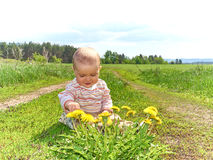 Baby sitting on a green meadow with yellow flowers dandelions Royalty Free Stock Images
