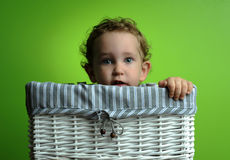 Baby Sitting In A Basket Royalty Free Stock Images