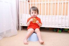 Baby sitting on potty and eating biscuit. Baby boy sitting on potty and eating biscuit royalty free stock photos