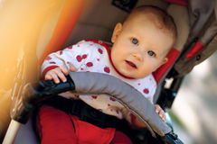 Baby in sitting stroller Stock Images
