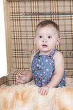 Baby sitting in suitcase. Adoreable baby girl sitting in suitcase Royalty Free Stock Photography