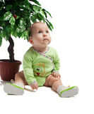 Baby sitting under green tree Stock Photography