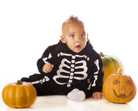 Baby Skeleton. An adorable mixed race baby boy dressed as a skeleton for Halloween. He's sitting among 3 pumpkins. Isolated on white royalty free stock photos