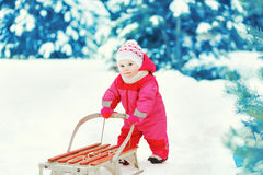 Baby sledding in the winter Royalty Free Stock Image