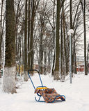 Baby sleds in winter Park. Funny baby sled in snow-covered Park and plaid Royalty Free Stock Photo