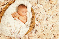 Baby Sleep Autumn Leaves, New Born Kid, Newborn Asleep. Baby Sleep in Autumn Leaves, New Born Kid Asleep on Decorated Background, Newborn One Month Old Royalty Free Stock Image