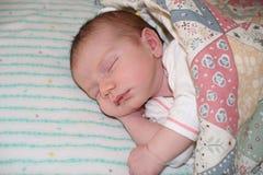 Baby sleeping. Two week old newborn sleeping Stock Photography