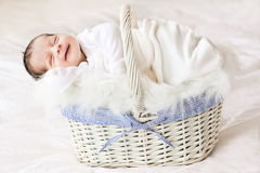 Baby sleeping. A 2 weeks old baby boy smiling while asleep in a basket Stock Images