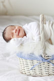 Baby sleeping. A 2 weeks old baby boy smiling while asleep in a basket Stock Photography