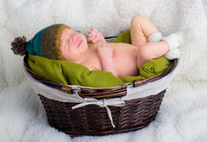 Baby sleeping in a basket Stock Image