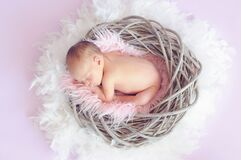 Baby Sleeping in a Basket and a Round Feather Surrounding the Basket Royalty Free Stock Photos