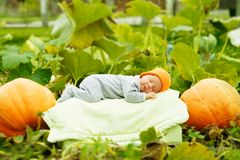 Baby sleeping on big pumpkin Stock Photos