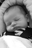 Baby Sleeping in Carseat. A newborn baby boy sleeps in his carseat Royalty Free Stock Photography