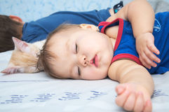 Baby sleeping daytime with brother and cat Stock Photography