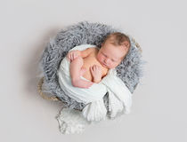 Baby sleeping half wrapped up with white scarf. Lovely baby sleeping half wrapped up with white scarf, in a basket on gray pillow Royalty Free Stock Photography