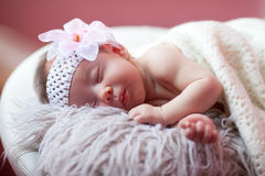 Baby is sleeping Stock Images