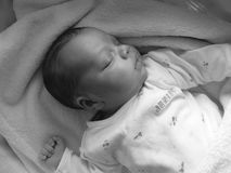 Baby sleeping on his back. Beautiful newborn sleeping peacefully on his back bundled up in a rag, black and white photo Royalty Free Stock Photo