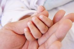 Baby sleeping and holding hand with father hand royalty free stock photo