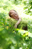 Baby sleeping outside Stock Images