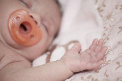 Baby sleeping with a pacifier Royalty Free Stock Images