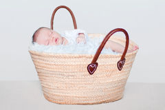 Baby sleeping in a shopping basket Stock Photography