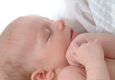 Baby Sleeps. Closeup of newborn baby girl being held by mother Royalty Free Stock Photos
