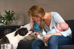 Baby sleeps and the dog isnt Royalty Free Stock Photo
