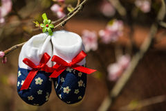 Baby slippers Royalty Free Stock Photo