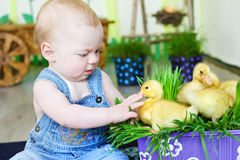 Baby with small ducks Royalty Free Stock Photos